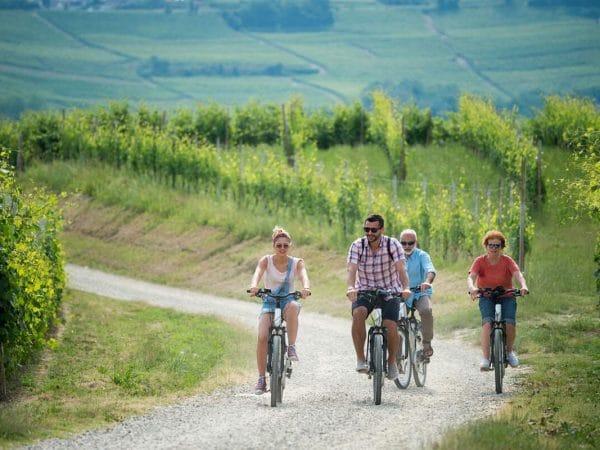 Noleggio e-bike e vespe - Agriturismo Il Cortile
