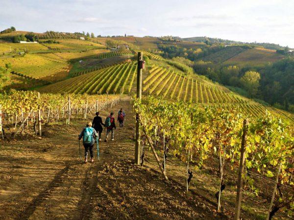 Escursioni e trekking nelle Langhe - Agriturismo Il Cortile